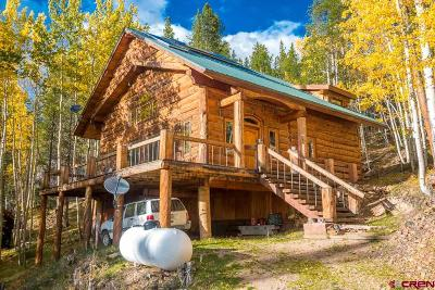 Gunnison County Single Family Home For Sale: 6100 County Road 763