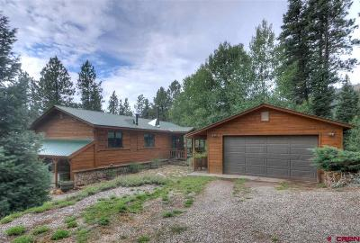 La Plata County Single Family Home For Sale: 204 Skyline Drive
