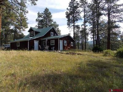 Pagosa Springs Single Family Home For Sale: 3485 Trophy Lake Place
