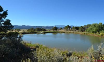 Durango Single Family Home For Sale: 700 Cr 302