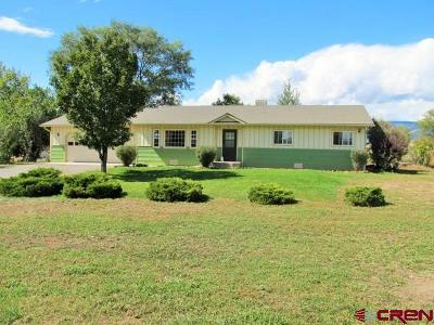 Eckert Single Family Home For Sale: 21611 Vaca