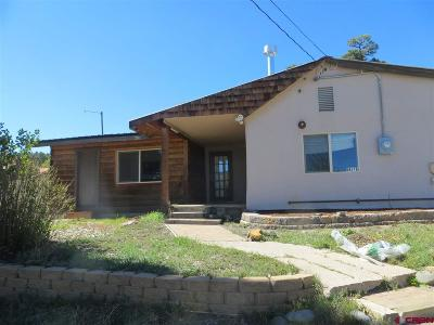 Pagosa Springs Single Family Home For Sale: 266 S 9th St