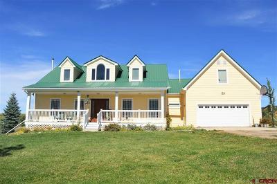 Durango Single Family Home For Sale: 730 Florida Meadows Ln