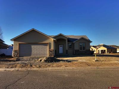Montrose Single Family Home For Sale: 63287 Lavender