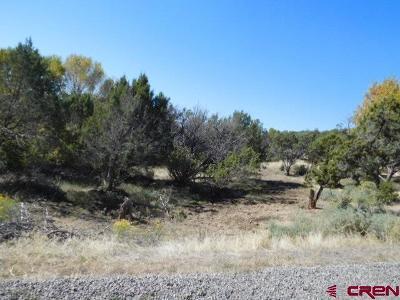Cedaredge Residential Lots & Land For Sale: 275 SE Eldorado