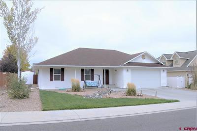 Montrose Single Family Home For Sale: 2230 American