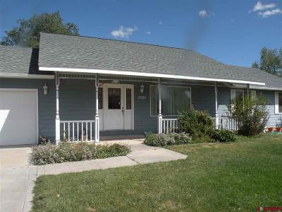 Montrose Single Family Home For Sale: 2002 Otter Pond