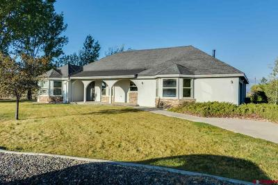 Montrose Single Family Home For Sale: 62905 Jeremy