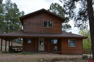 Pagosa Springs Single Family Home For Sale: 120 Big Horn Court