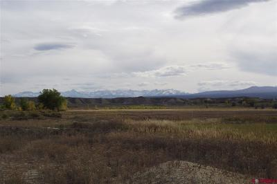 Montrose CO Residential Lots & Land For Sale: $539,950