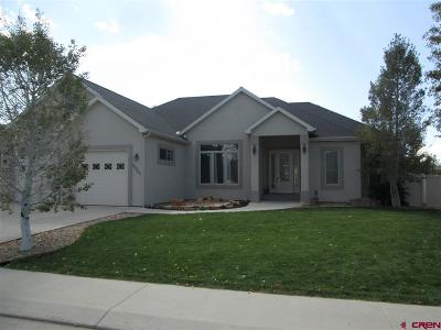 Montrose Single Family Home For Sale: 2920 Outlook Road