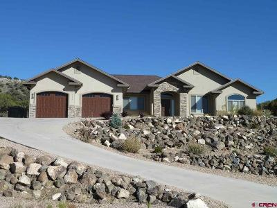 Cedaredge Single Family Home For Sale: 715 SE Pine Street