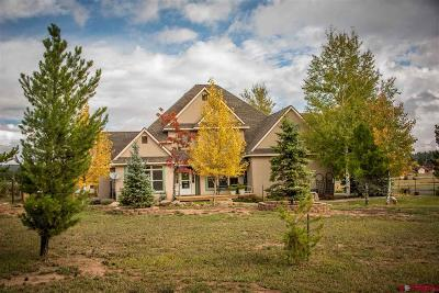 Pagosa Springs Single Family Home For Sale: 1917 Antelope Avenue