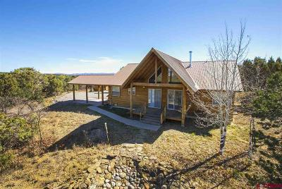 La Plata County Single Family Home For Sale: 480 Vision Way