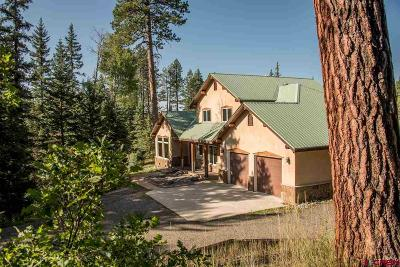 Pagosa Springs Single Family Home For Sale: 2368 Needles View Place