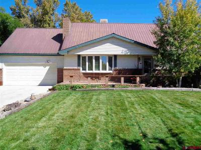 Montrose Single Family Home For Sale: 1013 Scenic Circle