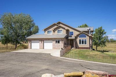 Durango Single Family Home For Sale: 1542 Cr 302