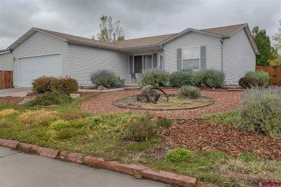 Montrose Single Family Home For Sale: 2105 Leah
