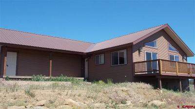 Pagosa Springs Single Family Home For Sale: 300 Palomino Place