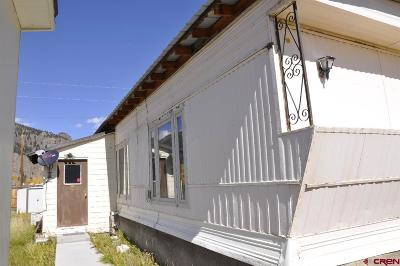 Creede Mobile/Manufactured For Sale: 107 E. 11th St.