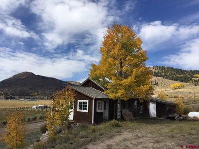 Creede Single Family Home For Sale: 600 Forest Road 520