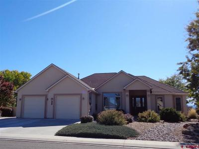 Montrose Single Family Home For Sale: 2968 Outlook