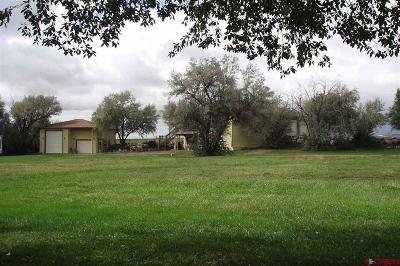 Eckert CO Single Family Home For Sale: $399,950
