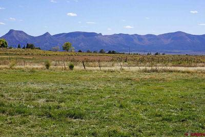 Mancos Residential Lots & Land For Sale: 14195 Road 31