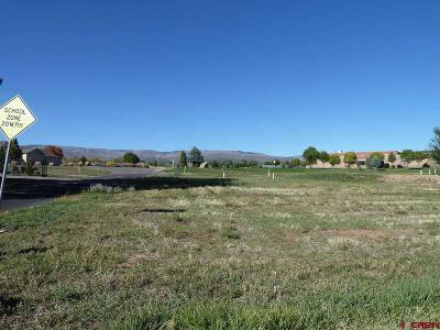Cedaredge Residential Lots & Land For Sale: 930 SE Fairway