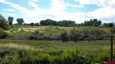 Montrose Residential Lots & Land For Sale: 62000 Jay Jay