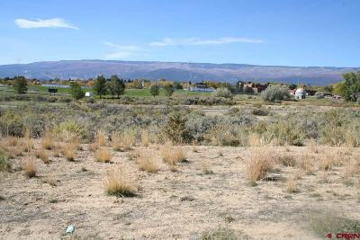 Cedaredge Residential Lots & Land For Sale: 740 SE Pine