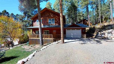 La Plata County Single Family Home For Sale: 802 Forest Lakes Drive