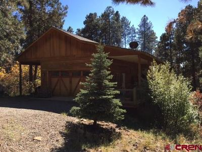 La Plata County Single Family Home For Sale: 166 E Valley View Drive