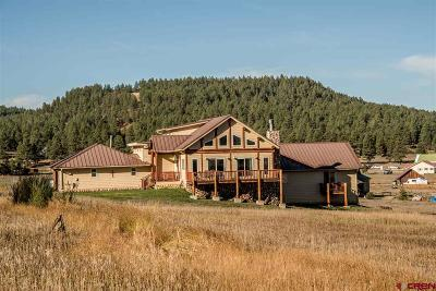 Pagosa Springs Single Family Home For Sale: 181 River Forest Drive