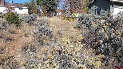 Residential Lots & Land For Sale: 638 Colfax Avenue