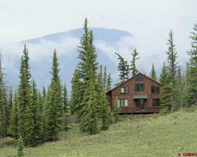 Creede Single Family Home For Sale: Old Red School House