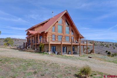 La Plata County Single Family Home For Sale: 1760 Roberts Ridge