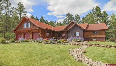 Pagosa Springs Single Family Home For Sale: 445 Oxbow Circle