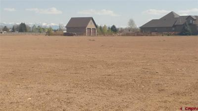 Montrose Residential Lots & Land For Sale: 6260