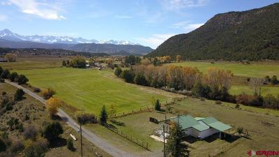 Ouray County Single Family Home NEW: 275 County Road 24