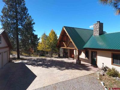 La Plata County Single Family Home For Sale: 1268 D Bar K Drive