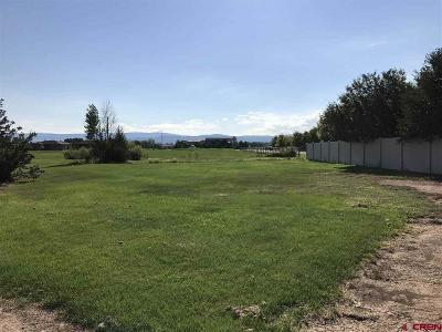 Montrose Residential Lots & Land For Sale: 3739 Buffalo