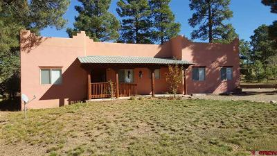 Pagosa Springs Single Family Home For Sale: 2497 Park Ave