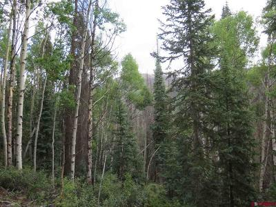 Creede Residential Lots & Land For Sale: Forest Service Rd