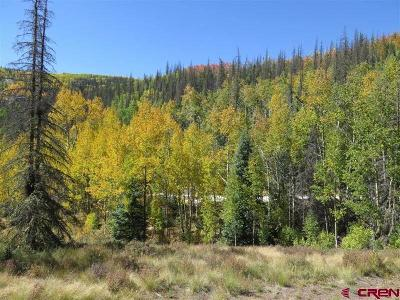 Creede Residential Lots & Land For Sale: Forest Service Road