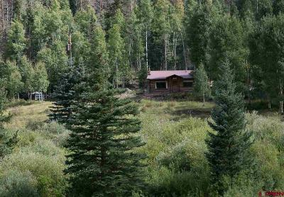 Creede Single Family Home For Sale: 2150 Usfs 521 Road