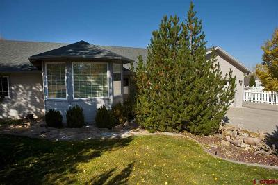 Montrose County Single Family Home For Sale: 2753 Harp