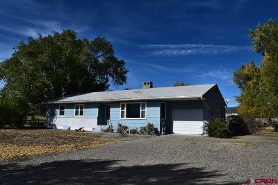 Delta County Single Family Home For Sale: 32841 Highway 92