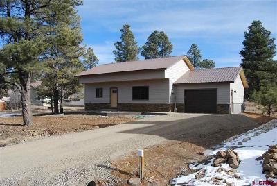 Pagosa Springs Single Family Home For Sale: 63 E Radiant Court