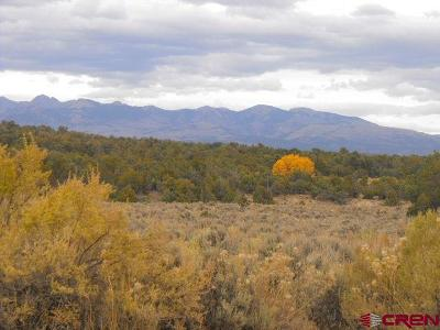 Mancos CO Residential Lots & Land For Sale: $55,000